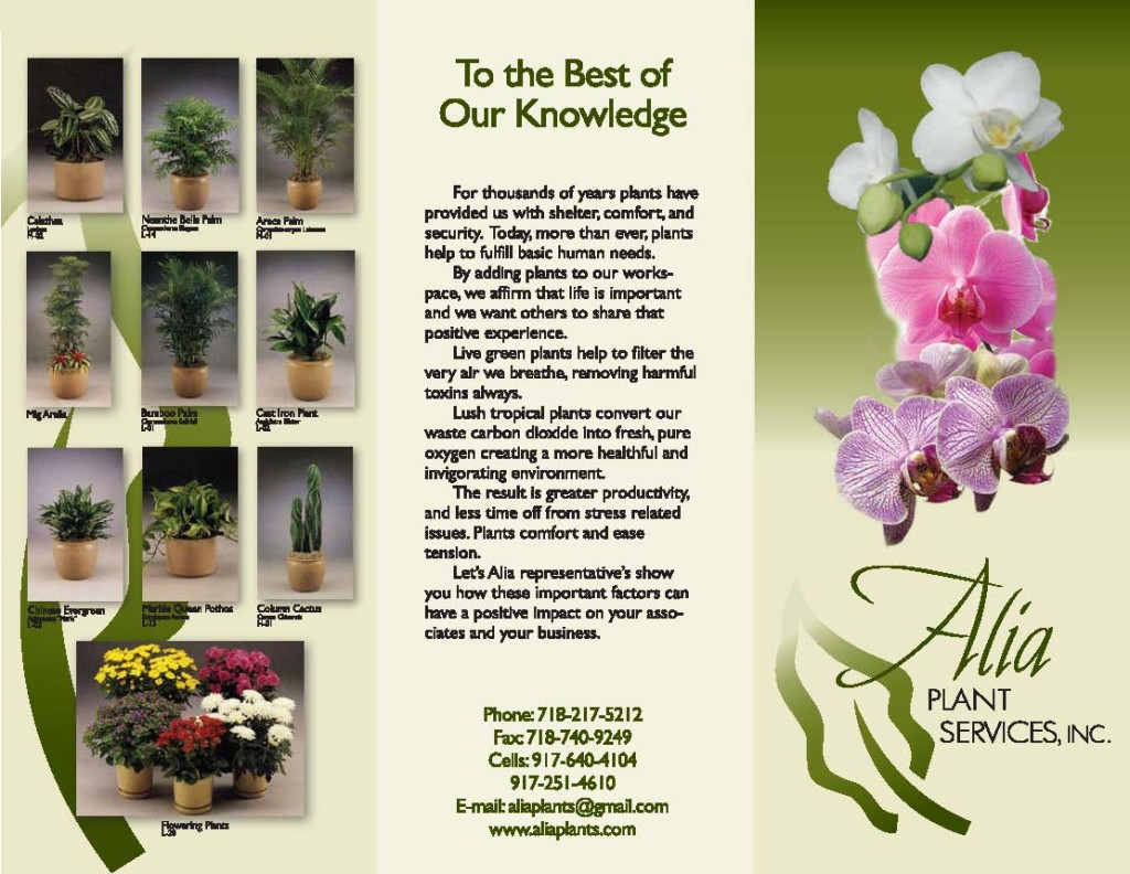 Alia Plants Brochure Anverso
