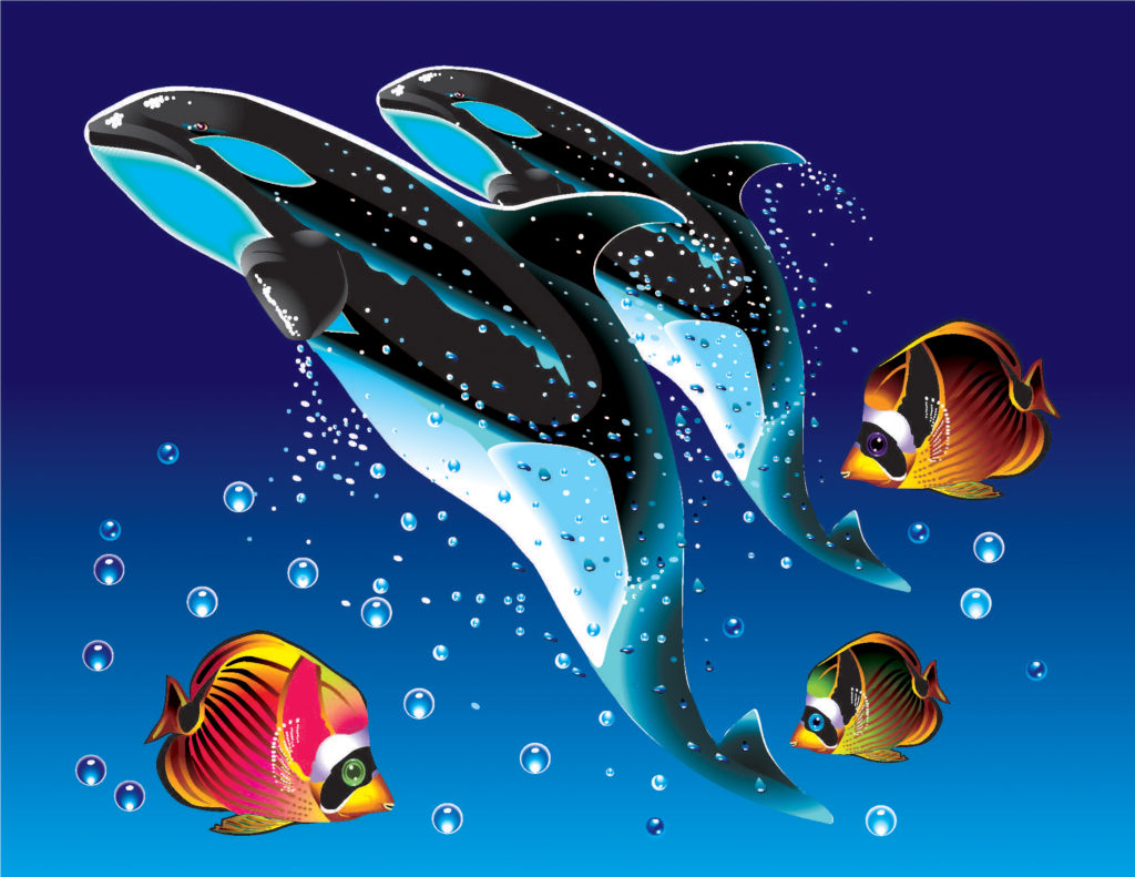 foto de la ilustración Ballenas